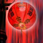 Chinese Lantern - Dawn O'Dowd