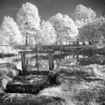 Highly Commended is  'Infra Red Pond'