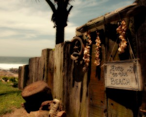 'Beachcomber' by Dave Worthington