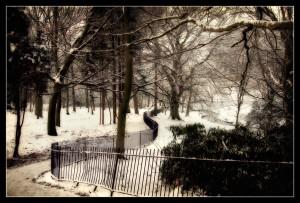 'December Scene' by Dave Worthington