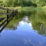 Wetland boundaries (Derwent water)