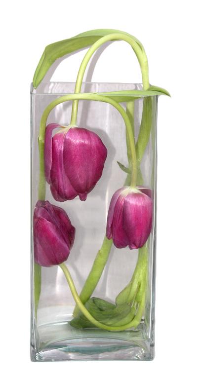 """""""Art Nouveau Tulips"""""""