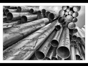 10 SLPS Forest of Pipes by Barbara Green