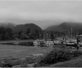 Ucluelet-Vancouver-Island-