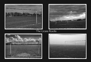 The Grass Roots by Simon Rahilly