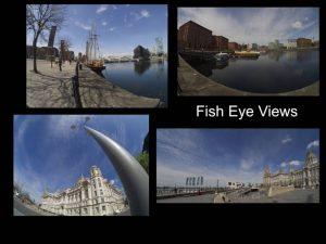 Fish eye views by
