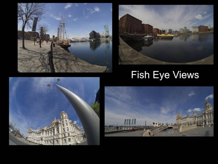 Fish eye views by