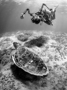 Derek Gould_The Underwater Cameraman_DM