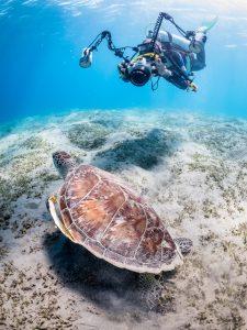The Underwater Cameraman_Derek Gould