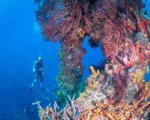 Wreck Of The Stavronikita