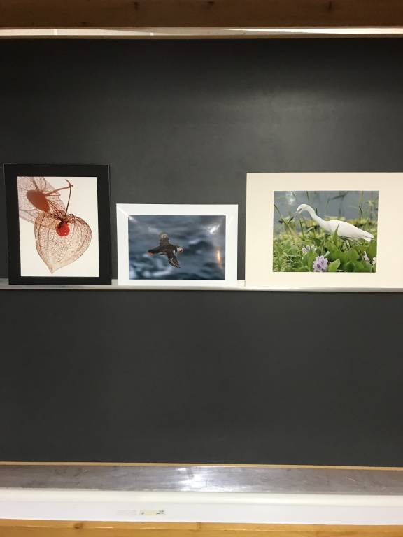 L to R Angelica Smith 2nd, Christine Lowe 3rd, Bert Whittlestone 1st Place. Favourite prints voted be members this evening.