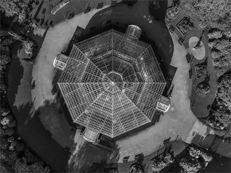 """""""The Palm House""""  by Ian Kemp"""