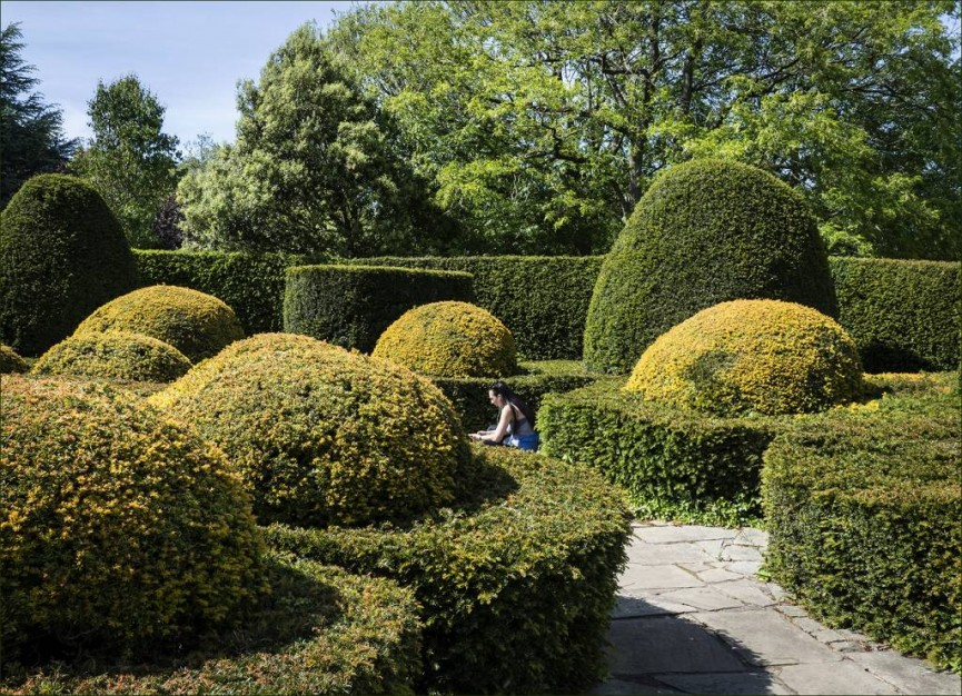 Topiary hideout