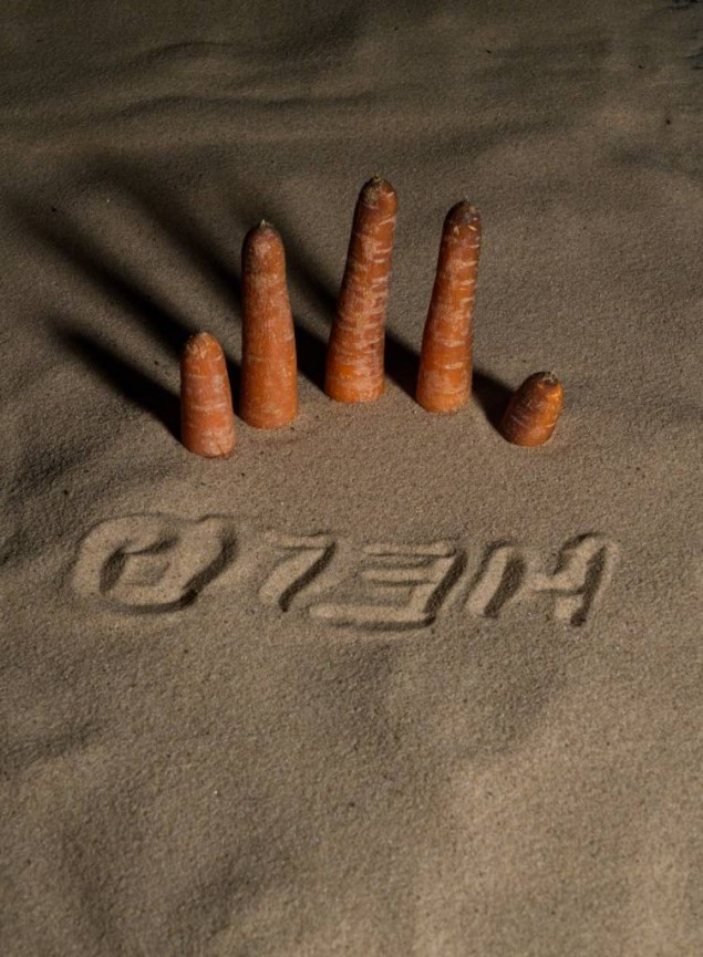 Carrot fingers - Trevor Roberts
