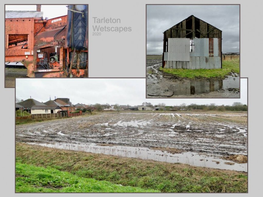 Tim Evans - Tarleton Wetscapes
