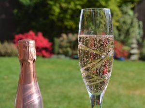 Cheers Everyone ! - Ann Roberts