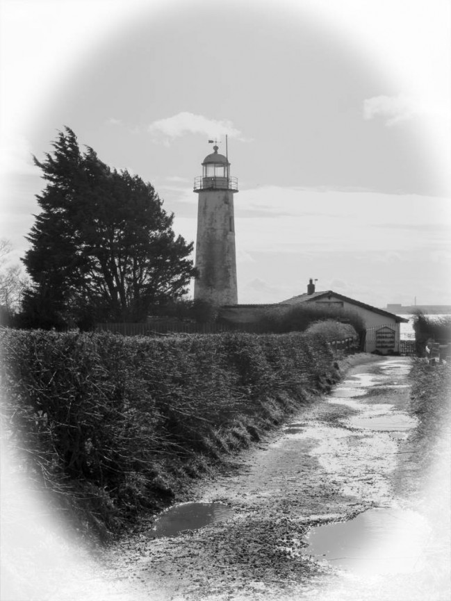 Lighthouse - Marie McGonigal