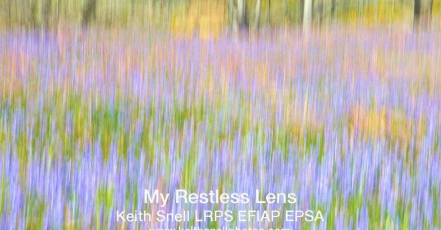 Restless Lens