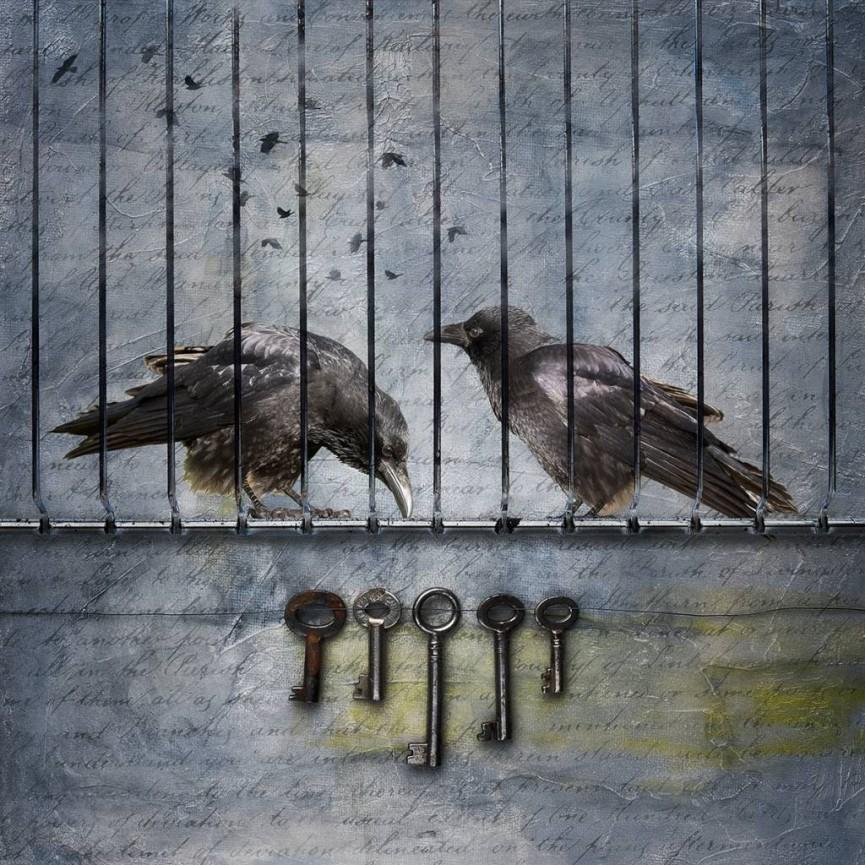 Lockdown by Stan Farrow