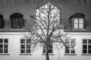 Bruges by Derek Gould
