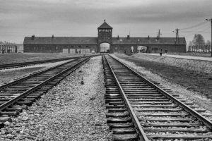Commended - Birkenau by Paul Hamilton