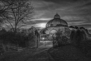 The Palm House & A Full Moon by Ed Foy