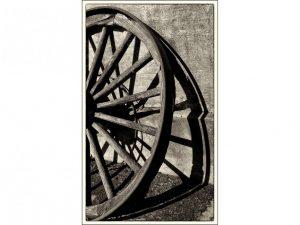 Wheel by Alan Shufflebotham