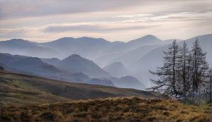 Commended - Borrowdale by  Christine  Lowe LRPS