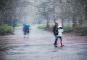 Commended - Downpour by Christine Lowe LRPS