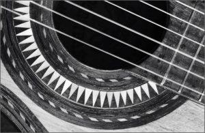 Salvador Ibanez guitar 1898 by Barbara Green
