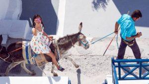 Unsupervised Donkey, Santorini by Derek Gould