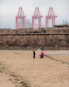 Derek Gould Sand and Cranes