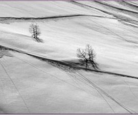 1st place mono and overall competition winner - Snow Trail by John Thomson