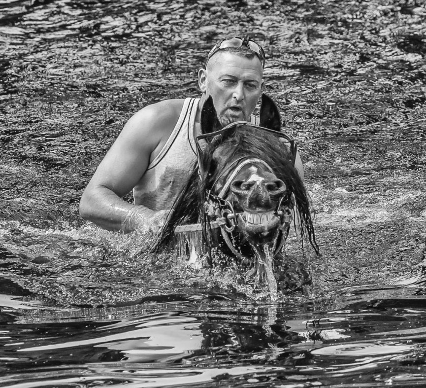Taking a Dip Appleby Horse Fair by Martin Reece - Commended