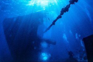 Highly Commended -Wreck of Yolanda, 1985 by Derek Gould