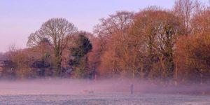 Winter Morning Mist by Ed Foy