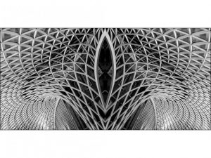 Highly Commended - Roof Symmetry by Alan Shufflebotham