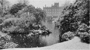 Commended - April at Biddulph Grange by John Thompson